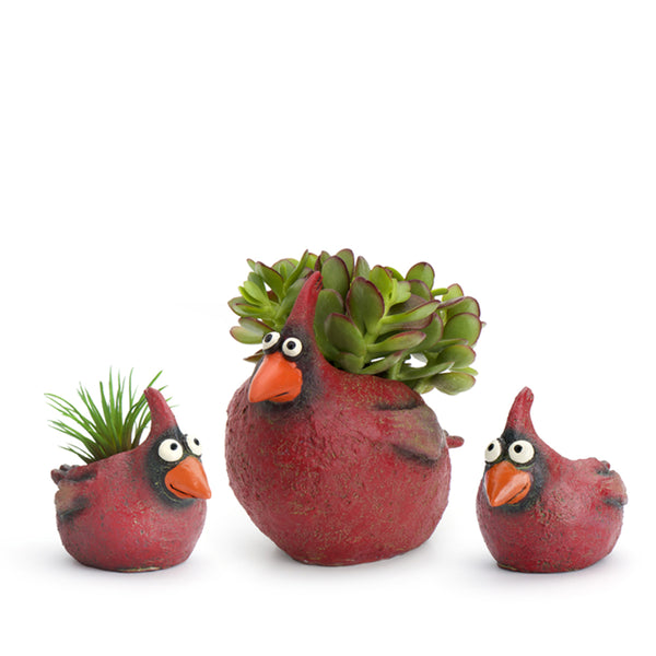 Red Bird Riot Planters!