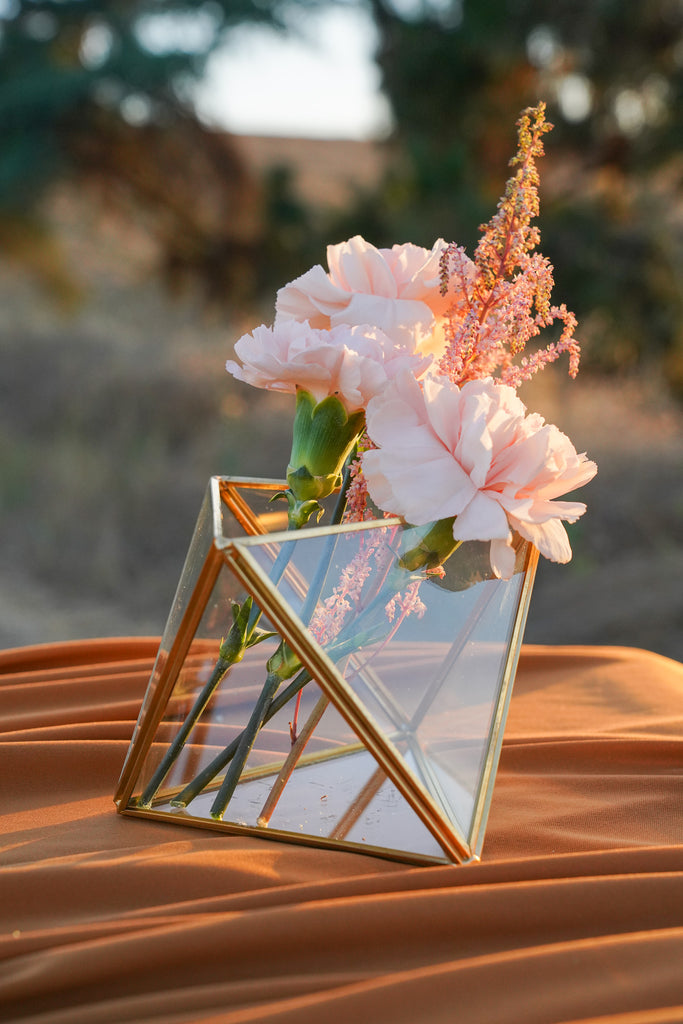 Triangle Geometric Glass Terrarium
