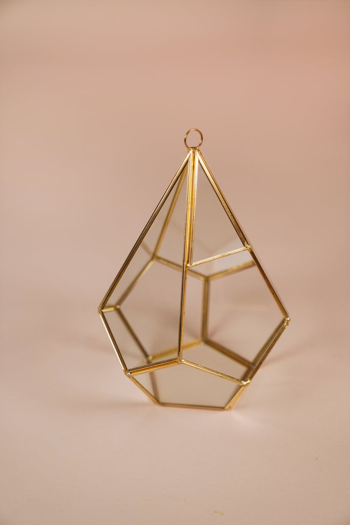 Triangle Geometric Terrarium