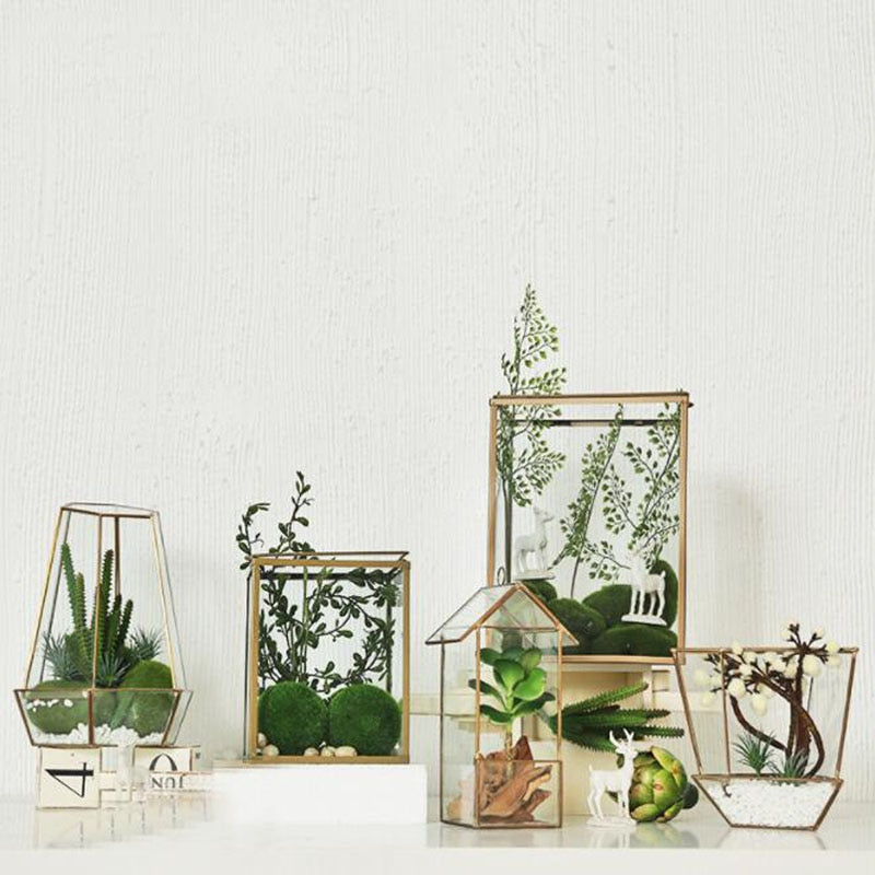 Gold Glass Terrariums