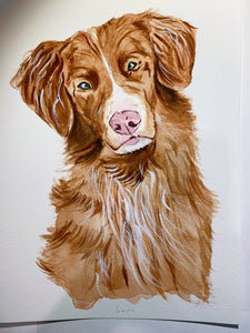 A3 Pet Portrait