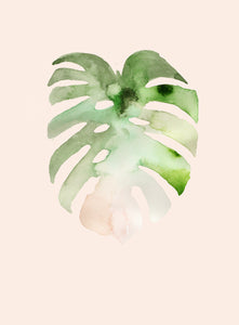 the monstera print on pink