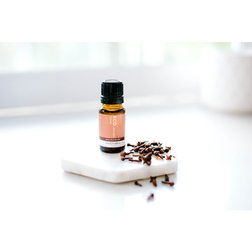 Clove Bud Pure Essential Oil - Eco Modern Essentials