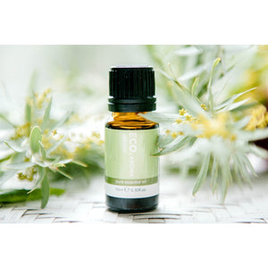 Vetiver Essential Oil - Eco Modern Essentials