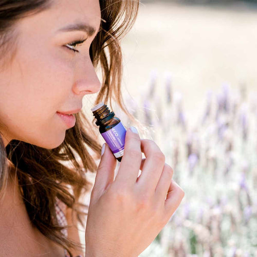 Lavender Essential Oil - Eco Modern Essentials