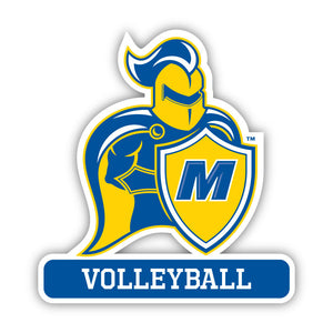 Madonna Volleyball Decal -M12