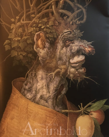 アルチンボルド展 Arcimboldo Nature into Art