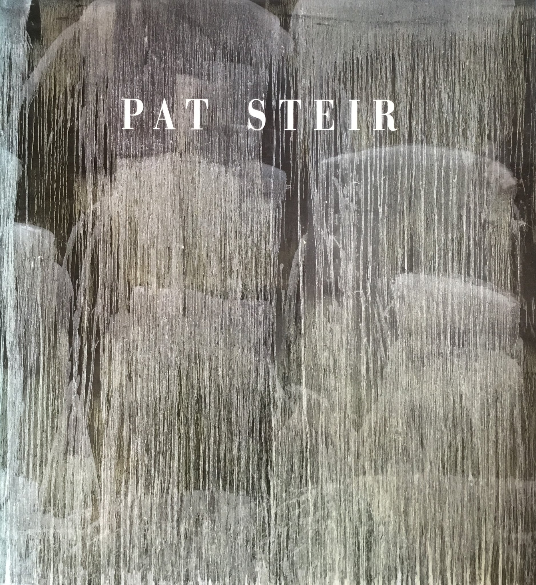 Pat Steir Thomas  McEvilley パット・ステア