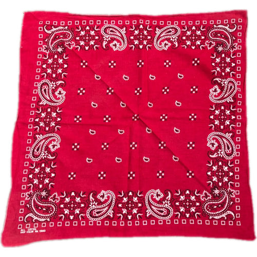 90s Fast Color Red Paisley Bandana