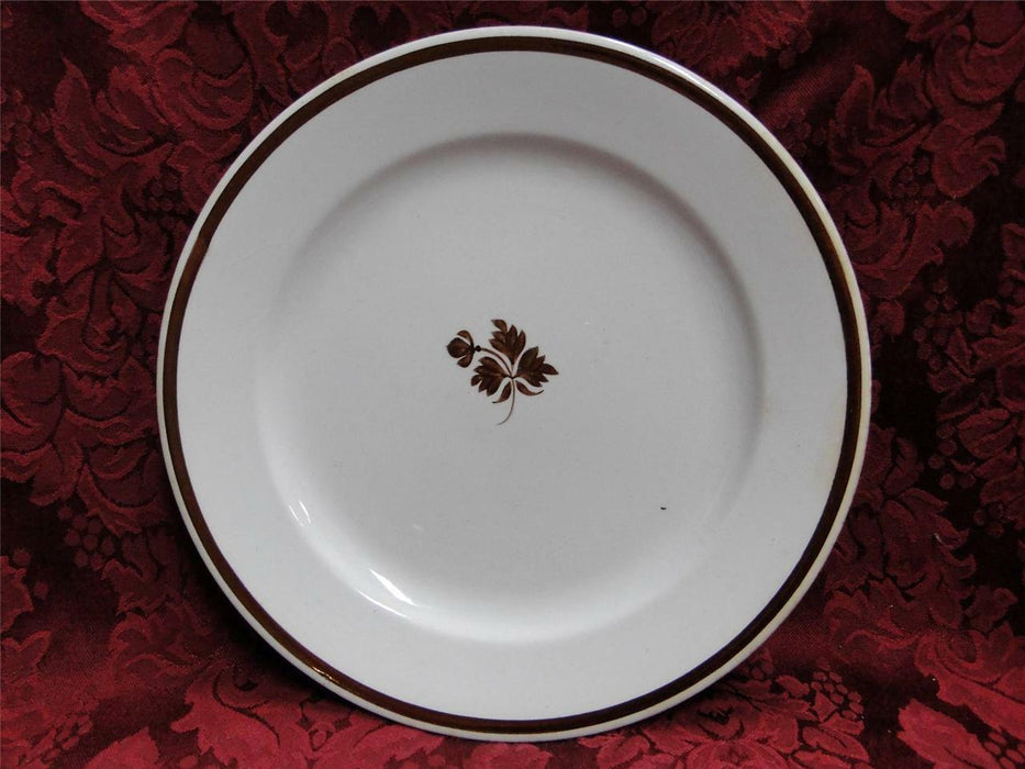 Meakin, Alfred Tea Leaf, Copper Tea Leaf Center: Luncheon Plate (s) AS IS