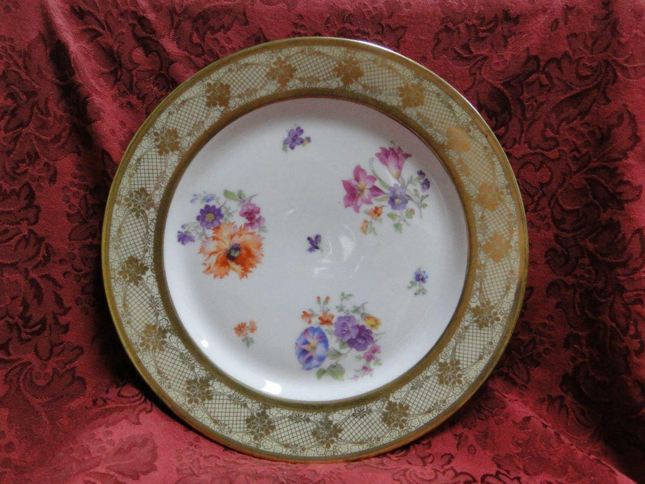 Tirschenreuth Floral Center and Gold Filigree on Rim: Dinner Plate, 10.75""