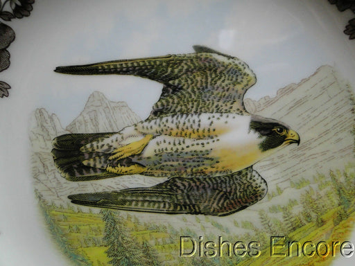 "Spode Woodland Birds of Prey Summer Peregrine Falcon: NEW Dinner Plate, 10 3/4"", Box"