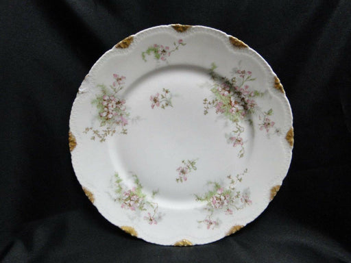 Haviland (Limoges) Schleiger 146, Gold Daubs:Dinner Plate (s) AS IS, Top Chipped