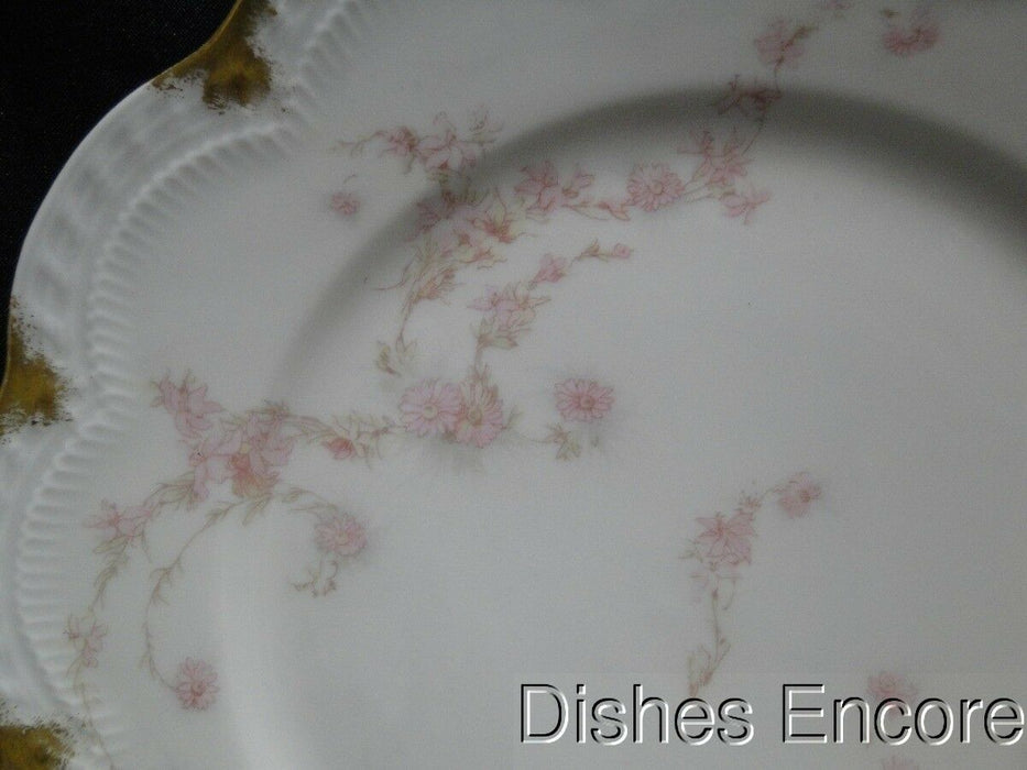 Haviland (Limoges) Schleiger 247d, Pale Pink Flowers, Gold: Luncheon Plate AS IS