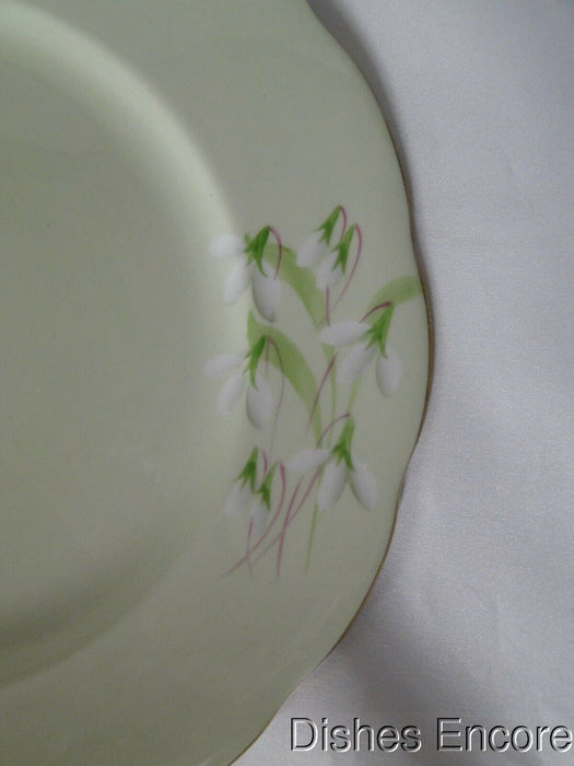 Royal Albert Laurentian Snowdrop, Pale Green, White Flowers: Dinner Plate, 10""