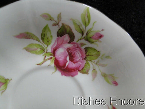 Adderley 7055, Pink roses with Gold Trim: Saucer (s) Only 5 1/2""