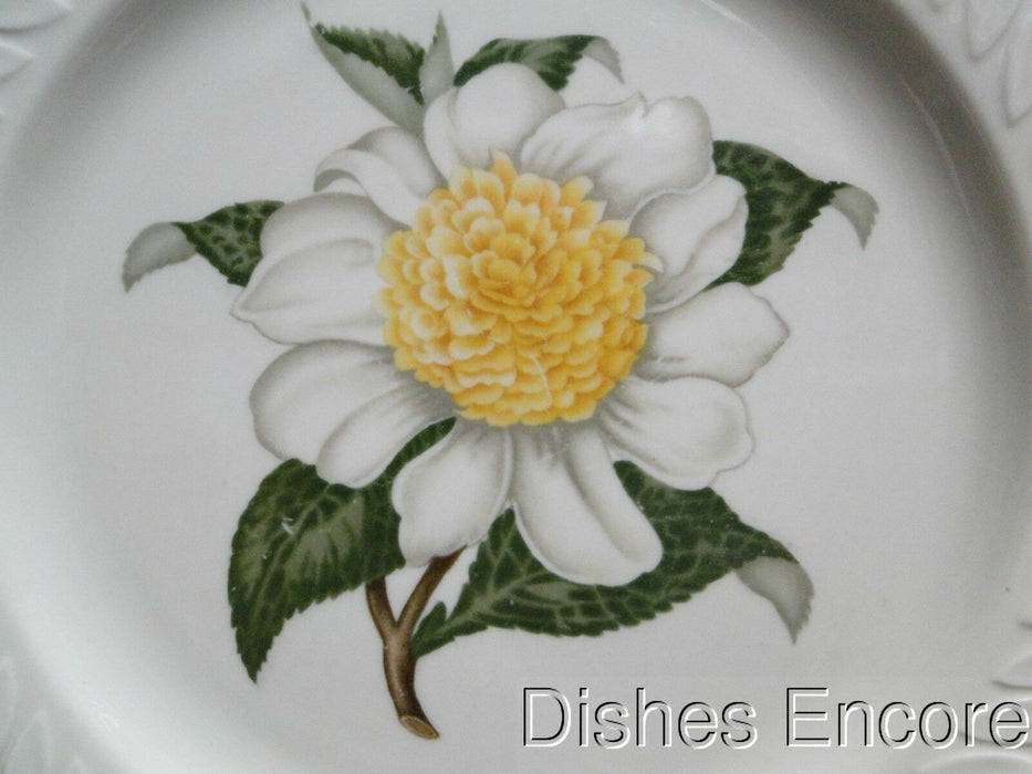 Haviland (New York) Camellia, White Flower w/Yellow, Embossed: Dinner Plate (s)