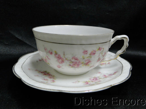 "Zeh, Scherzer & Co 508, Pink Rose Garland: Cup & Saucer Set (s), 2"" Tall"