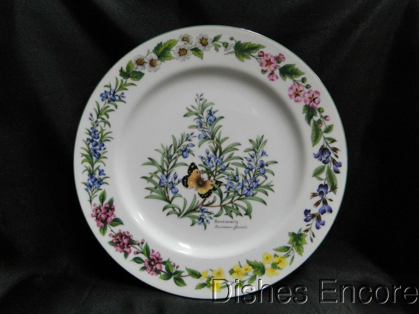 "Royal Worcester Worcester Herbs: Dinner Plate (s), 10 1/2"", Rosemary, Reduced"