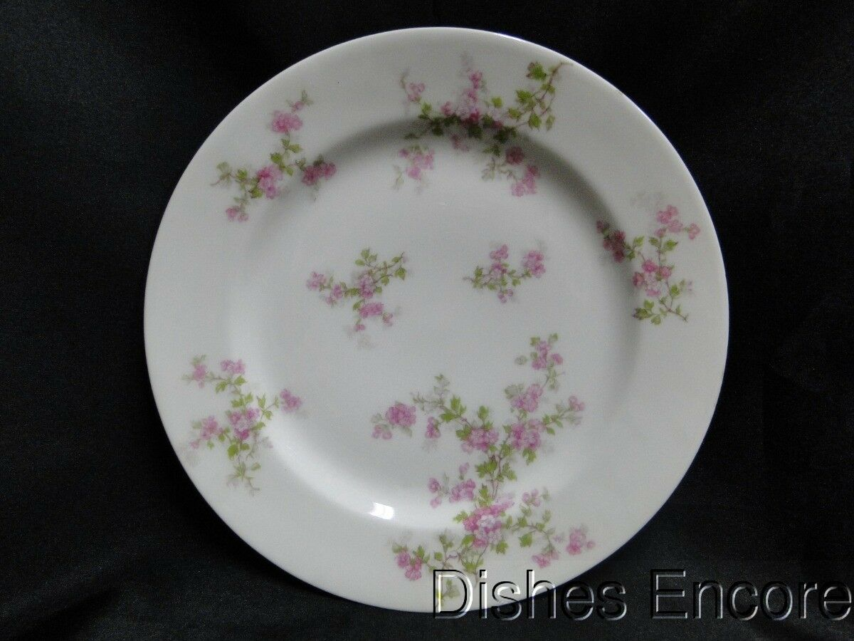 Haviland (Limoges) Schleiger 29a, Limoges, Pink Flowers, Green Leaves: Luncheon Plate (s)