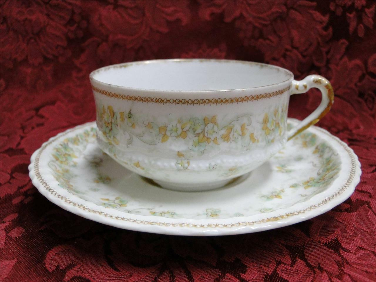 Haviland (Limoges) Green & Tan Floral Garland, Blank 123: Cup and Saucer Set (s)