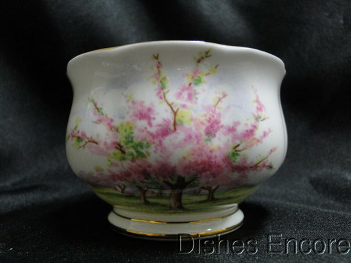 Royal Albert Blossom Time, Pink Flowering Trees: Mini Open Sugar Bowl (s) 2 1/8""