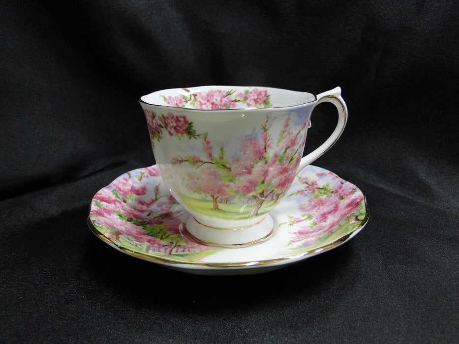Royal Albert Blossom Time, Pink Flowering Trees: Cup & Saucer Set (s), 2 3/4""