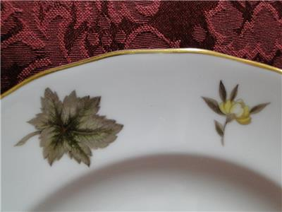 Royal Worcester Dorchester, Brown & Yellow Flowers: Salad Plate (s), 8""