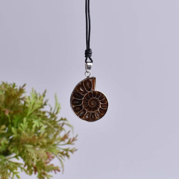 Sea Nautilus Ammonite Fossil Shell Necklace Natural Gemstone Madagascar Pendant - Saigonmade