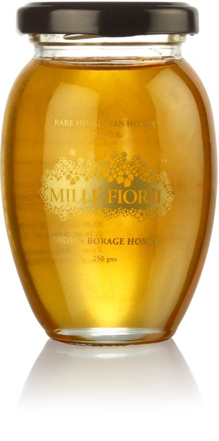 Mille Fiorii Indian Borage Honey 250g
