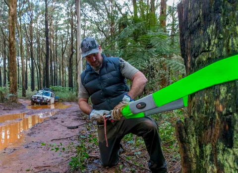 Use your tree saver strap