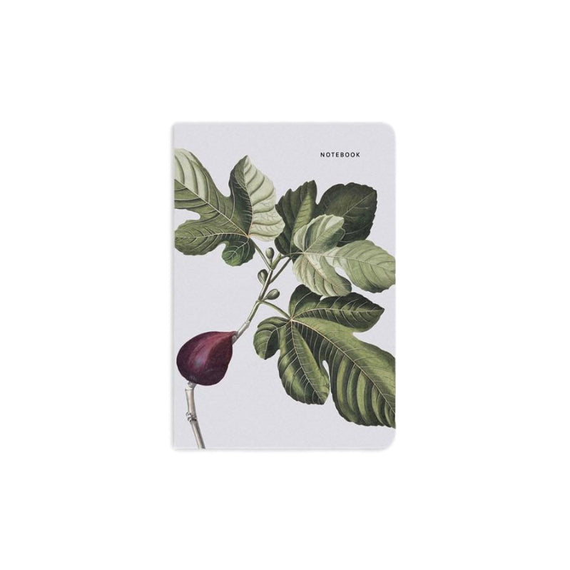Notebook | Fig