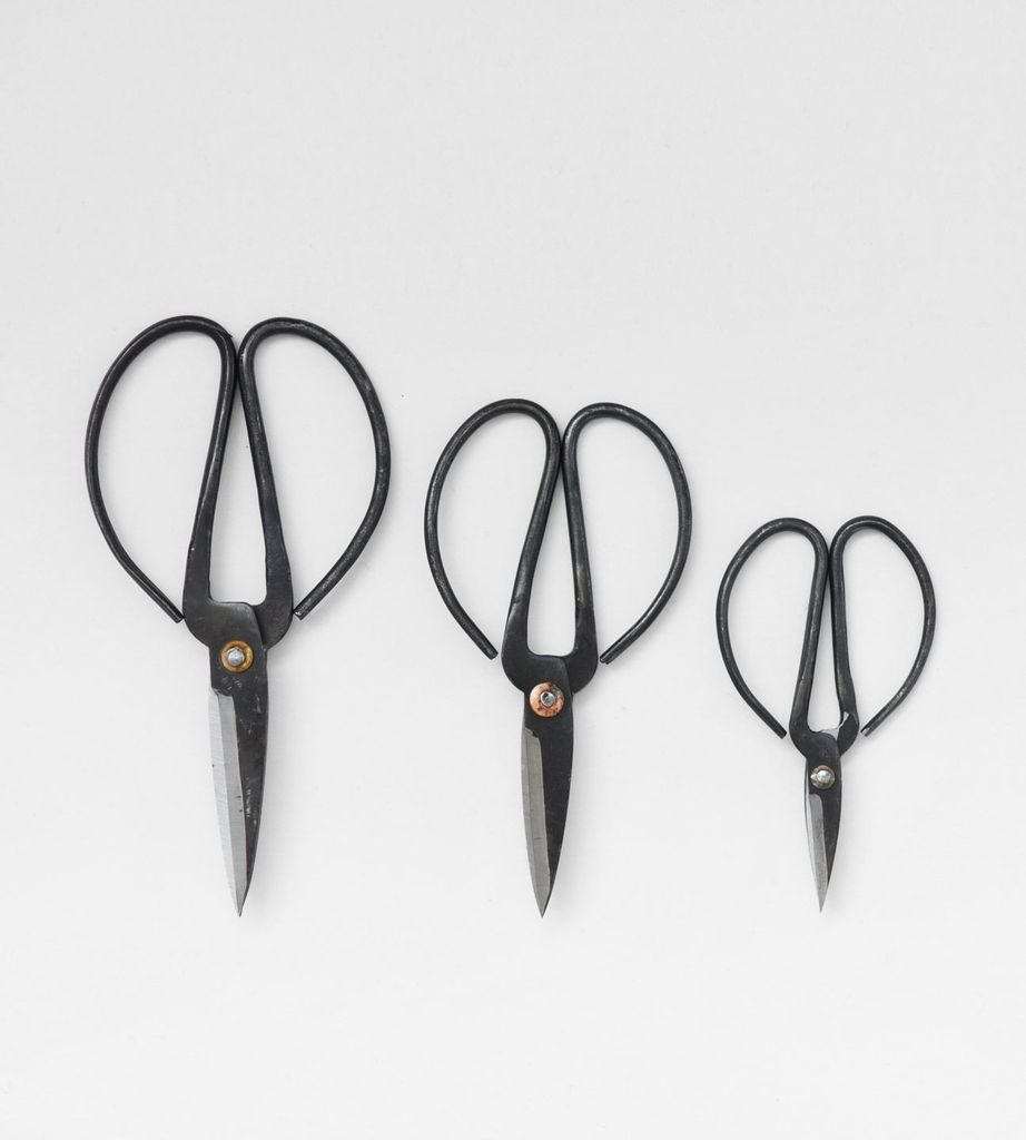 Father Rabbit Herb Scissors 3 NZ
