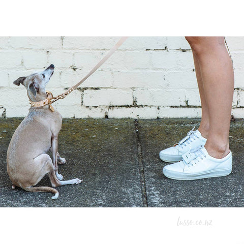 Spike Leather Leash | Gold