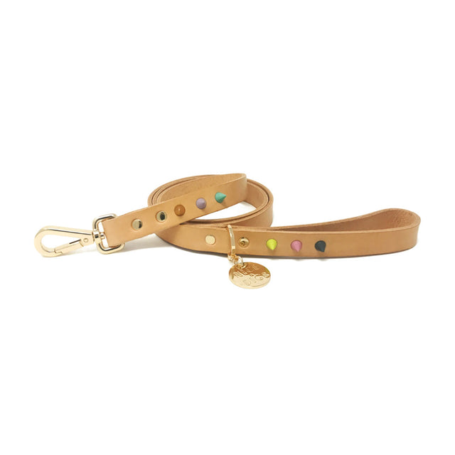 Spike Leather Leash | Pastel Party