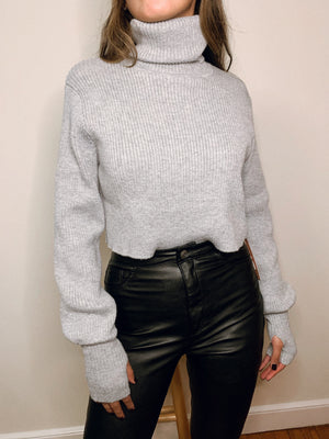 Lovers and Friends Cropped Turtle Neck