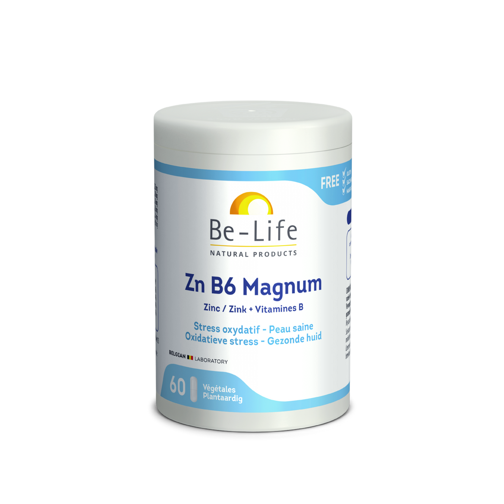 BE-LIFE Zn B6 MAGNUM 60 gel ZINC