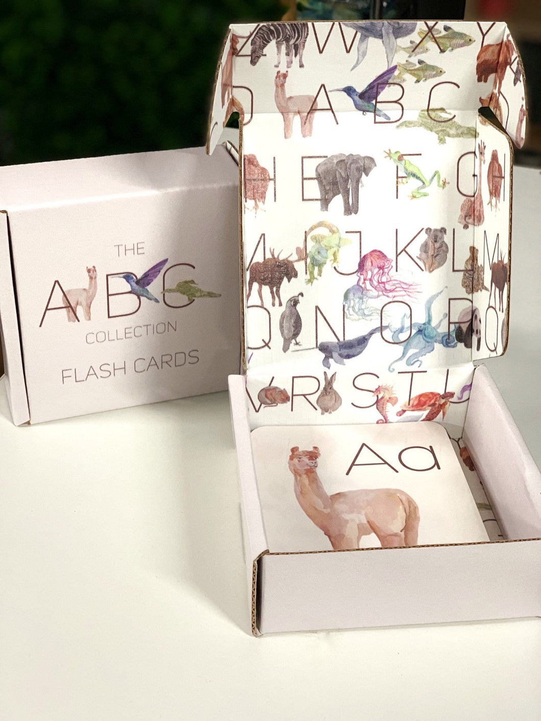 ABC Flash cards, Hand illustrated