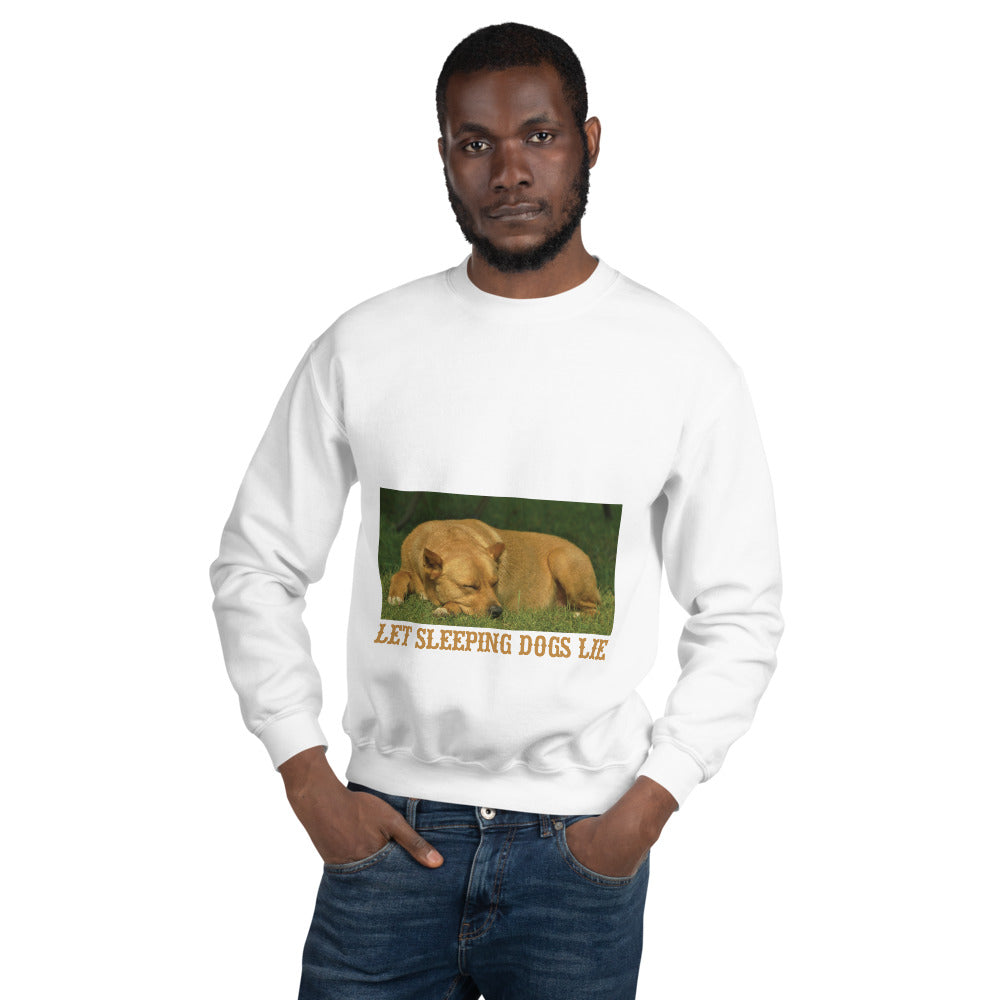 Let Sleeping Dogs Lie | Unisex Premium Sweatshirt