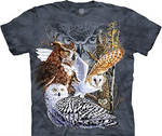 Find 11 Owls Mountain T-Shirt
