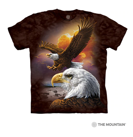 Eagle & Clouds T-Shirt