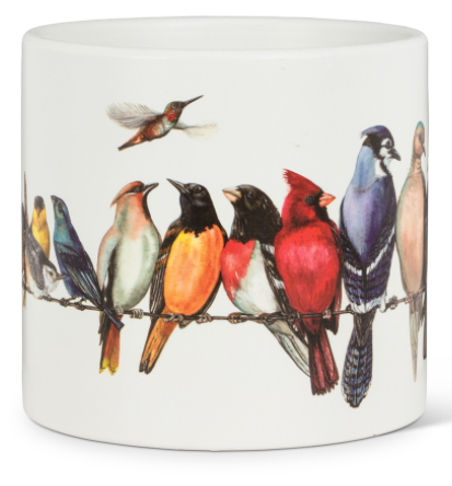 Large Birds on Wire Planter