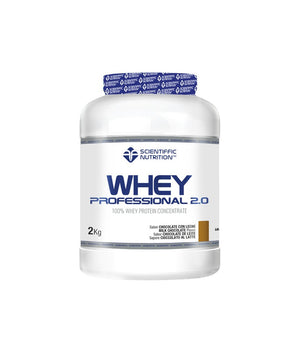 WHEY PROFESSIONAL 2.0