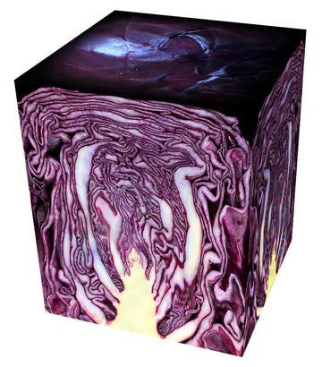 cabbage cube