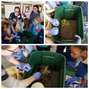 Worm Workshops