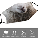 Benefits of sheep face mask covering