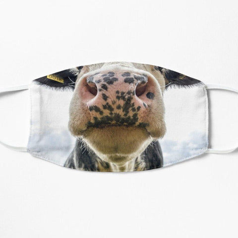 Dairy cow face mask on farm