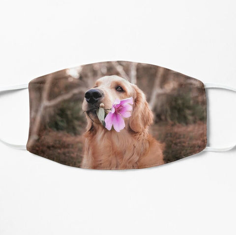 Golden retriever with flower cute face mask