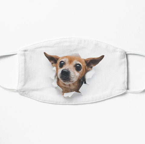 Whazzup! Toy Terrier Face Mask
