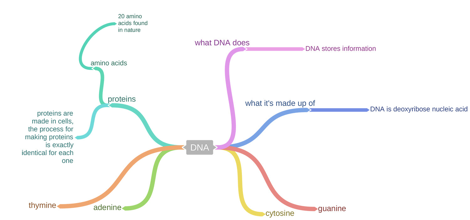 2. Image of mind map post-game play